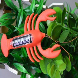 Solar Powered Lobster