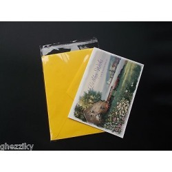 100 A7+ 5.4 X 7.25 Clear Resealable Cello Bag Plastic Envelopes Cellophane Bags