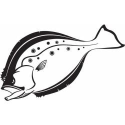Steelfin Flounder Decals Black