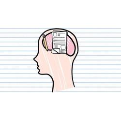 Psicologa para escritura de personajes
