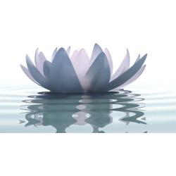 Master Meditation in 7 Simple Steps