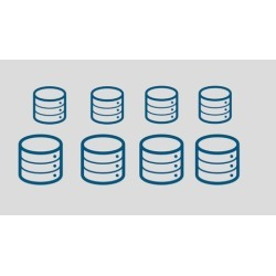 Introduction to Database Management Systems (DBMS)