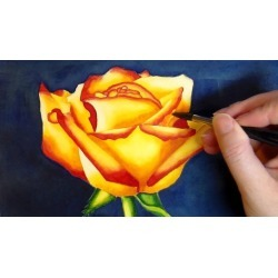 Paint a Watercolor Rose - Watercolors for Beginners