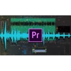 Master Audio Editing In Premiere Pro
