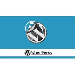 WordPress Video Tutorial for the absolute beginner found on Bargain Bro India from Udemy for $199.99
