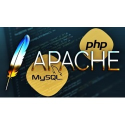 STARTUP APACHE, MYSQL, AND PHP