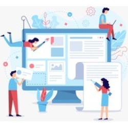 A professional WordPress Website in 7 steps