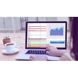 Microsoft Power BI Online