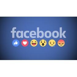 7 FIGURE Facebook Ads 2019