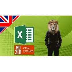 MO-201 - MOS Excel Expert 2019/365 Microsoft Certification