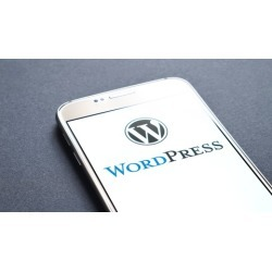 WordPress Tutorial For Bloggers Beginners To Advanced found on Bargain Bro India from Udemy for $19.99
