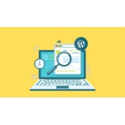 Become a Wordpress Professional in 10 Days!