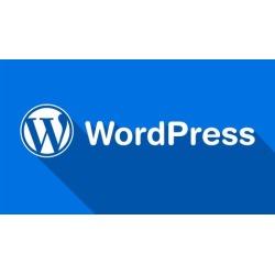 Master WordPress - Create a WordPress Website in 1 Hour