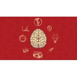 Neurocincia aplicada aos negcios found on Bargain Bro Philippines from Udemy for $89.99