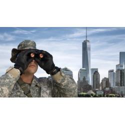 Job Search for Veterans (Basic)