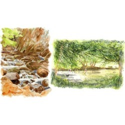 Paint 2 river scenes in FREE style Watercolor painting.