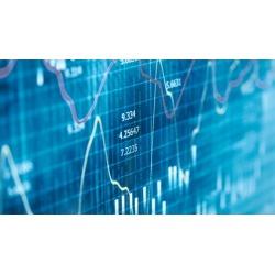 Forex Trading - Advanced Fundamental Analysis