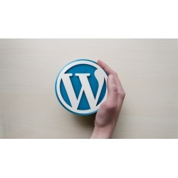 Wordpress Step by Step Website Creation With Free Plugin