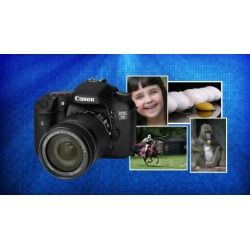 Digital Photography 101: Get Professional Quality Images Now