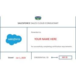 Salesforce Certified Sales Cloud Consultant Assessment Sets