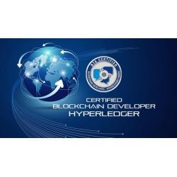 BTA Certified Blockchain Developer - Hyperledger - Mock Test