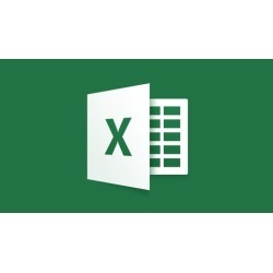 Microsoft Excel Complete Video Course in Urdu-Hindi
