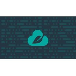 Spring Cloud Data Flow - Cloud Native Data Stream Processing