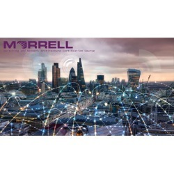 Morrell Switching & Network Architecture Certification MSNAC