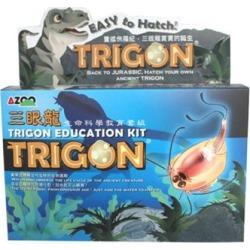 Azoo AZ05014 Trigon Education Kit