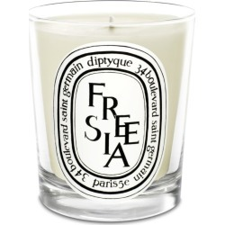 Diptyque Freesia Candle (190g) found on Bargain Bro UK from harrods.com