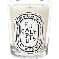Diptyque Eucalyptus Candle (190g) found on Bargain Bro UK from harrods.com