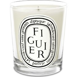 Diptyque Figuer Candle (190g) found on Bargain Bro UK from harrods.com