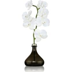 Senti Bergamot and Ginger Orchid Diffuser (250ml) found on Bargain Bro UK from harrods.com