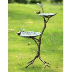Gossiping Birds 34