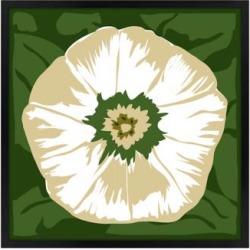 White Flower 26