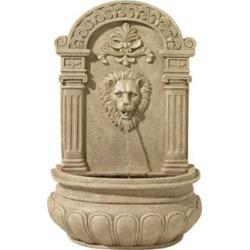 Lion Face 31