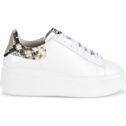 Ash Women's Women's Moby Snake-Print Trimmed Leather Platform Sneakers - Roccia - Size 36 (6) found on MODAPINS from Saks Fifth Avenue for USD $205.00