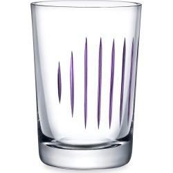 Nude Glass Parrot 2-Piece Tumbler Glass Set - Purple