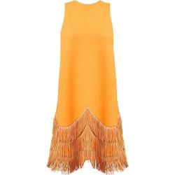Lela Rose Women's Sleeveless Fringe-Hem Shift Dress - Tangerine - Size 6 found on MODAPINS from Saks Fifth Avenue for USD $1490.00