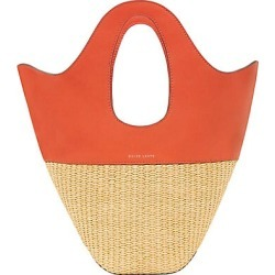 Danse Lente Women's Small Leather & Raffia Tote - Tomato found on MODAPINS from Saks Fifth Avenue for USD $375.00