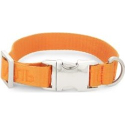 Very Important Puppies x Heron Preston Dog Collar found on Bargain Bro Philippines from Saks Fifth Avenue Canada for $117.40