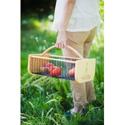 Maple Garden Carry-all By Terrain in Assorted Size L/G