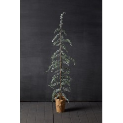 Faux Larch Tree By Terrain in Assorted Size S