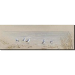 Streamline Art Shore Birds Canvas Wall Art