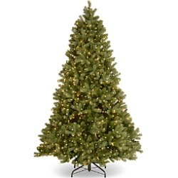 National Tree Company 7.5 ft. Downswept Douglas Tree with Clear Lights