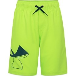 Under Armour Boys' Ua Volley Shorts - Big Kid found on Bargain Bro from Bloomingdales Canada for USD $32.30