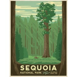 Canvas on Demand Poster Print 12 x 16 entitled Sequoia National Park, California - Retro Travel Poster
