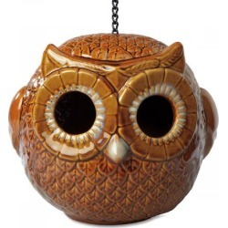 Owl Birdhouse found on Bargain Bro India from colorfulimages.com for $29.99