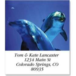 Curious Dolphins Select Return Address Labels found on Bargain Bro Philippines from colorfulimages.com for $8.99