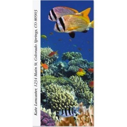 Vivid Coral Reef Oversized Return Address Labels found on Bargain Bro Philippines from colorfulimages.com for $9.99